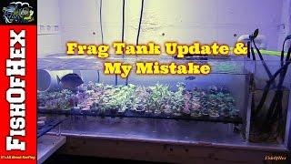Frag Tank Update & My Mistake