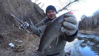 48 часов Вот это рыбалка! р. Лангери ловим Кунджу, Гольца.  Ночуем в Ниве!
