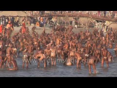 Best of Allahabad Kumbh mela  - World's largest religious gathering