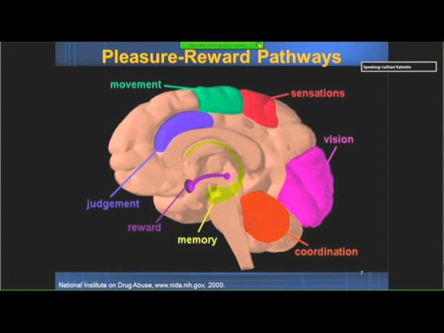 Petros Levounis, MD, MA: Recovery in Mental Health and Recovery in Addiction Treatment