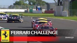 Ferrari Challenge Europe - Silverstone 2017, Coppa Shell Race 1