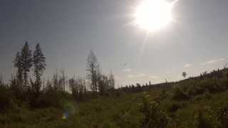 Treeplanting Helicopter Pick Up - Northern Ontario