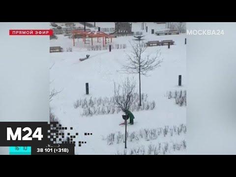 Москвичи показали, как в городе проходит режим самоизоляции - Москва 24
