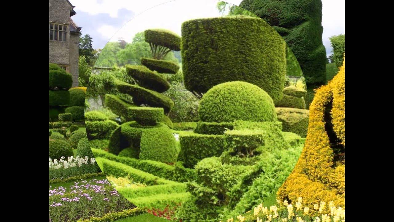 Arte topiario hd 3d arte y jardiner a dise o de jardines for Figuras para jardines