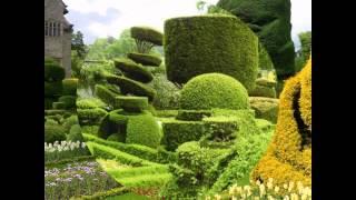 Arte Topiario HD 3D Arte y Jardinería Diseño de Jardines