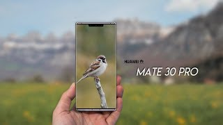 Huawei Mate 30 is released soon, is it enabled to use HarmonyOS or Android?