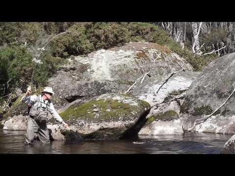 Tasmania's Nth East Rivers