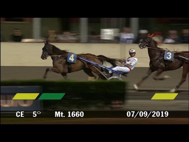 2019 09 07 | Corsa 5 | Metri 1660 | Premio Campionato Europeo Gruppo Orogel