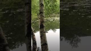 Wonder Lake in Holmes, New York (State Park)