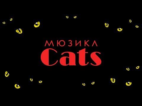 Мюзикл Кошки. Обзор.