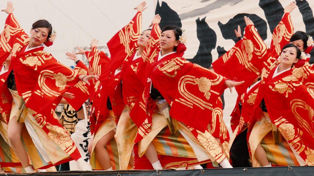 Kết quả hình ảnh cho yosakoi dance