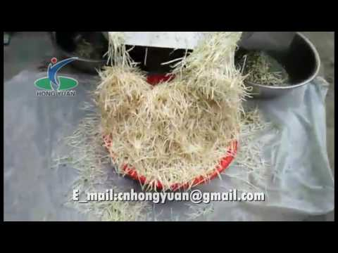 bean sprouts washing cleaning grading sorting machine