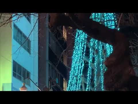 Tokyo Xmas Illumination