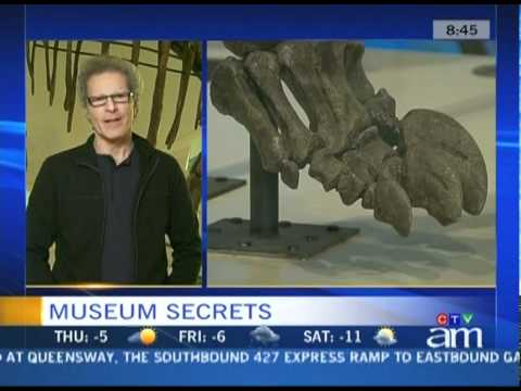"""Museum Secrets"" TV show featured on Canada AM News"