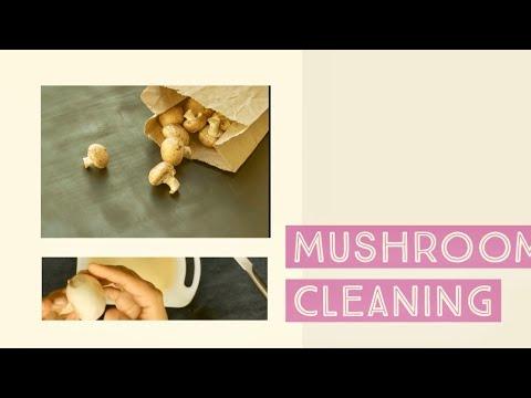 Clean mushrooms