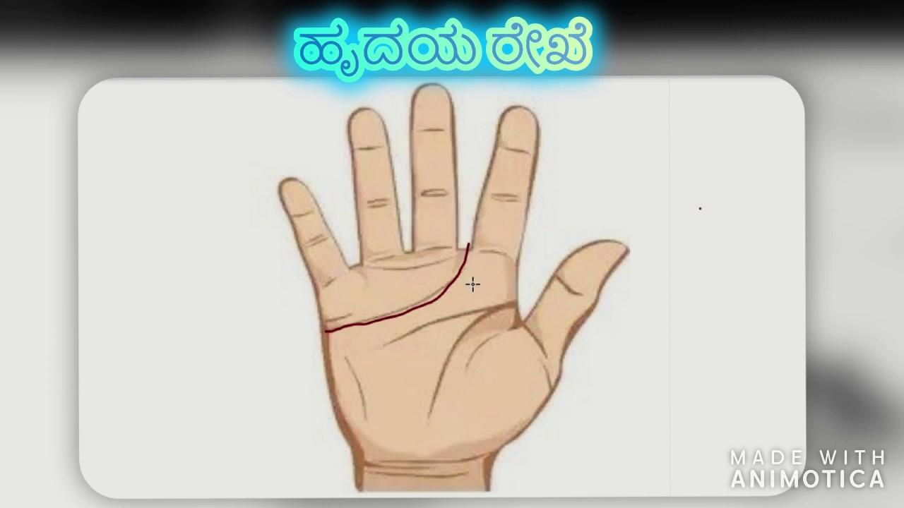 Heart Line | Information | In kannada. - YouTube