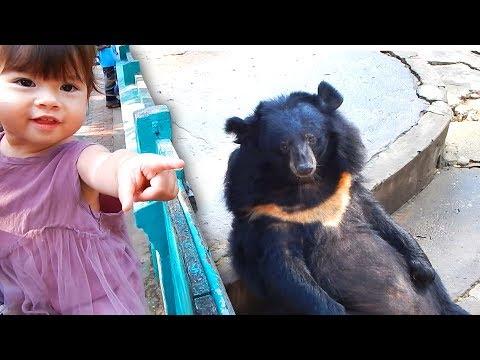 A trip to Yangon Zoo