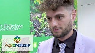 Biozon: corroborante a base di ozono