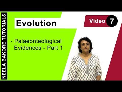 Evolution - Palaeonteological Evidences - Part 1