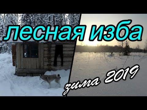 Лесная изба.Зима 2019