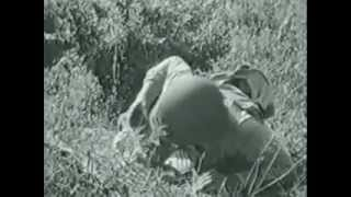 Weapons and devastation, U.S Army  ww2 infantry training film