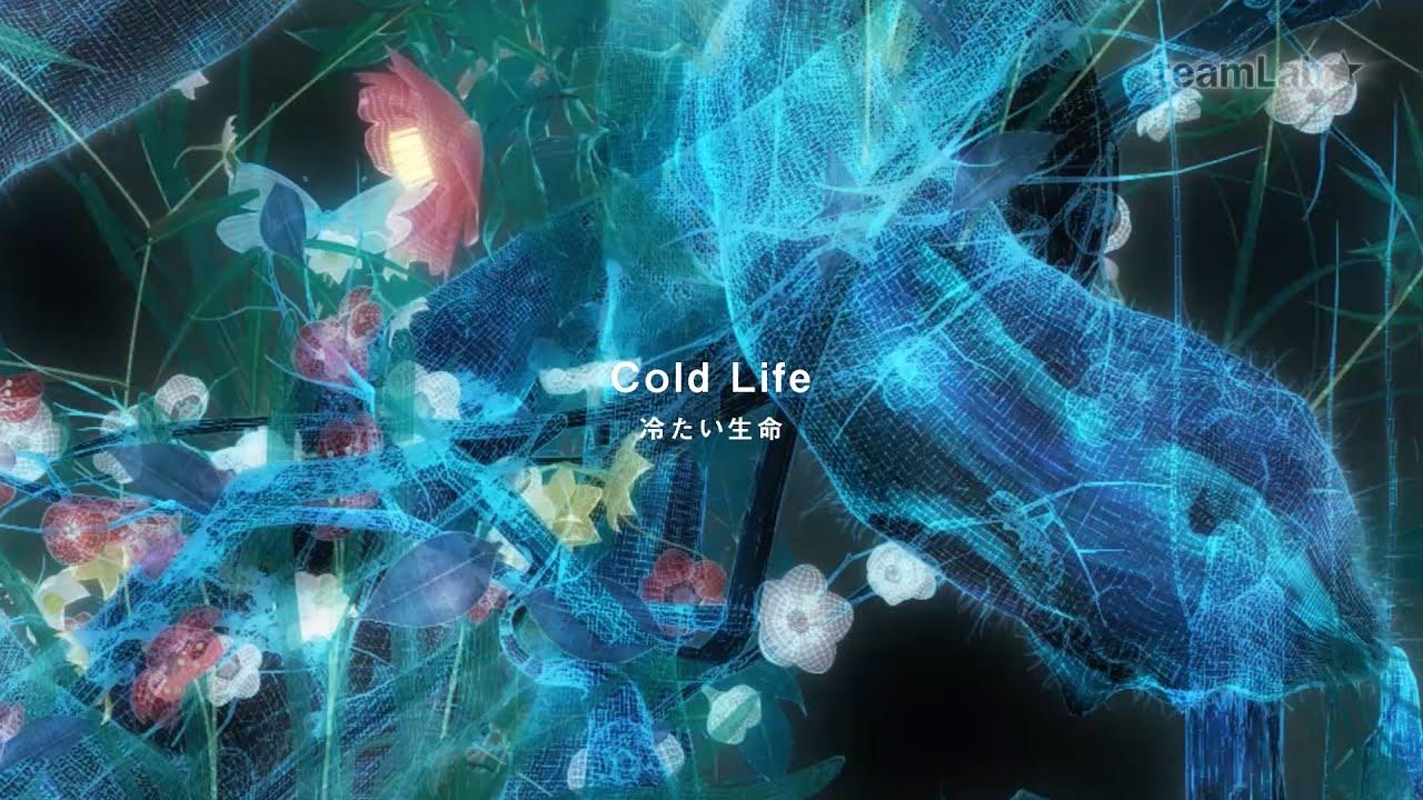 cold life 冷たい生命 youtube