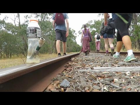 Trekking the Abandoned Mornington railway line