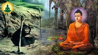 Kể Truyện Đêm Khuya _ Đừng Khóc Vì Cuộc Đời Bạn Mãi Vất Vã Khổ Đau - Audio Truyện Phật Giáo