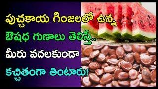 పుచ్చకాయ గింజలలో ఉన్న ఔషధ గుణాలు తెలిస్తే.. | Raw Watermelon Seeds Health Benefits | Arogya Mantra