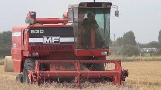 Massey Ferguson 530 combine, on Winter Barley. August 2016.