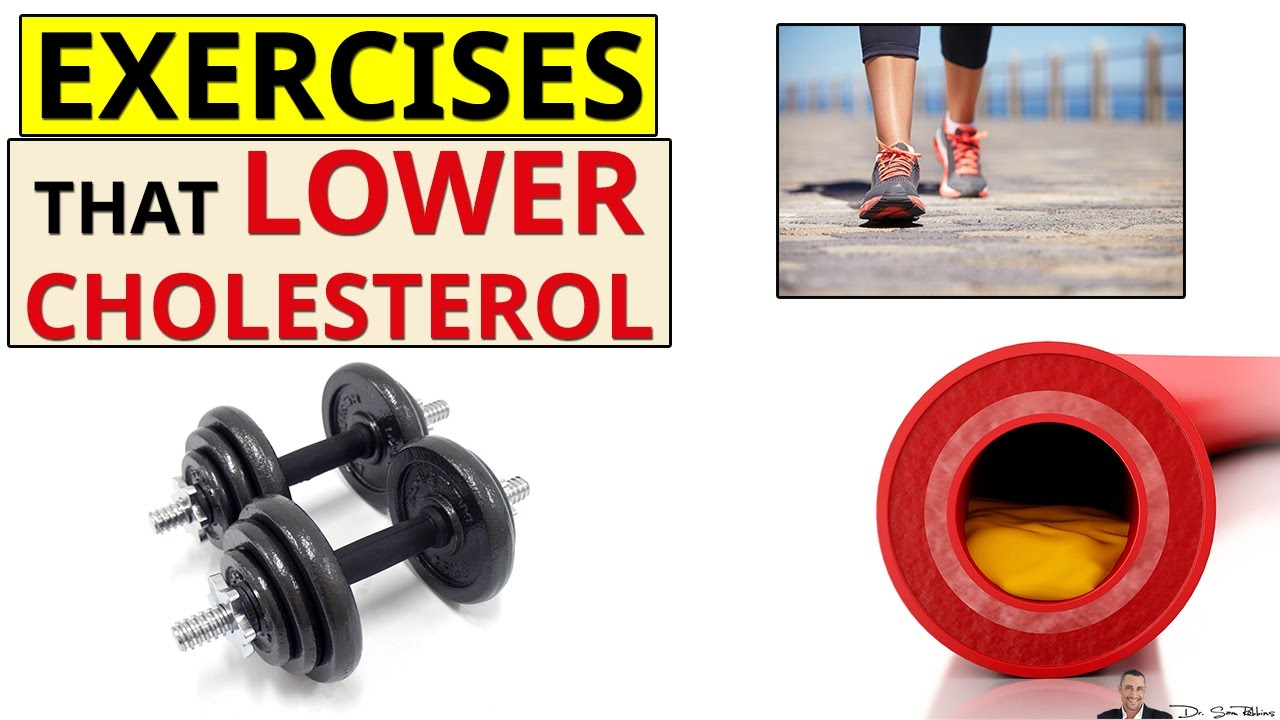 2 Best Exercises For Lowering Cholesterol By Dr Sam Robbins Youtube