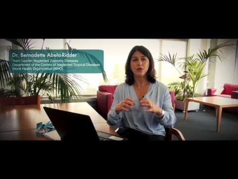 Global Health at the Human-Animal-Ecosystem Interface (New!) - MOOC trailer