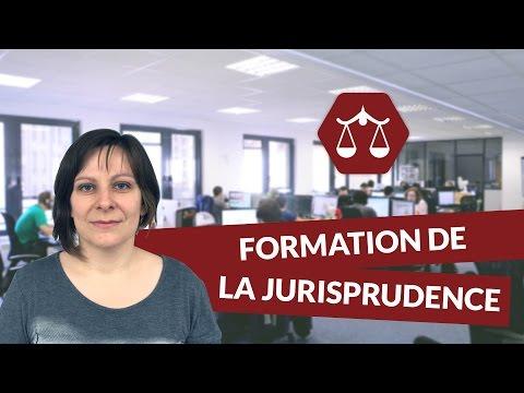 Formation de la jurisprudence - Droit - digiSchool