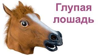 Ну очень глупая лошадь