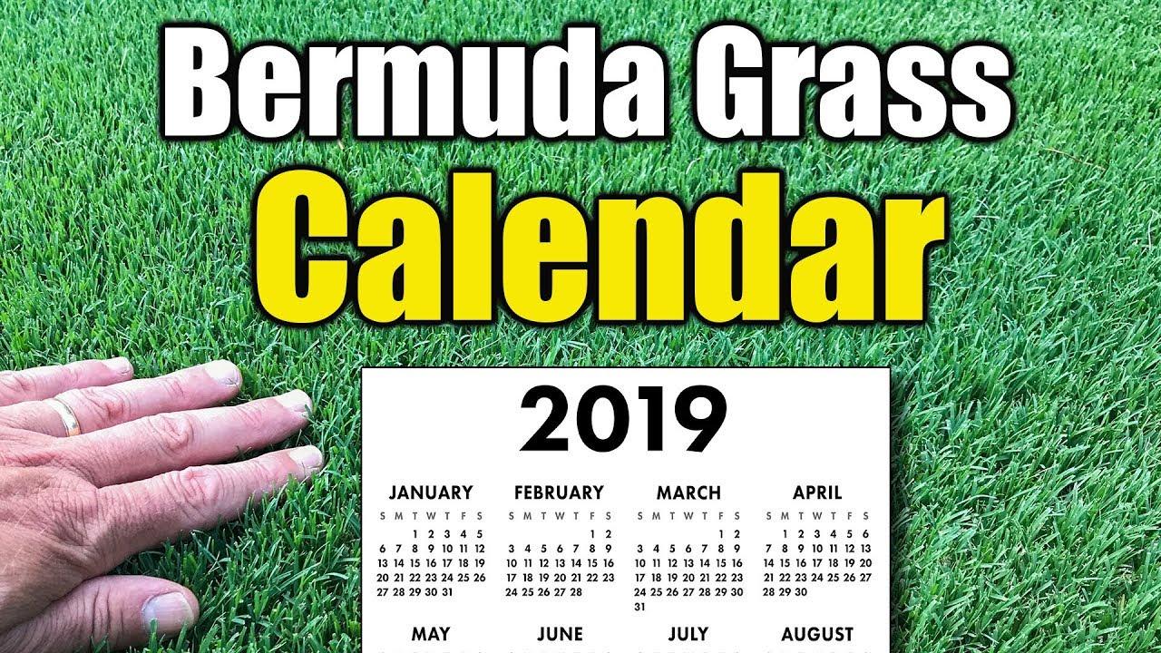 Bermuda Grass Calendar 2019 Youtube
