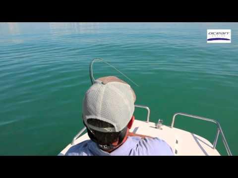 Dubai Queenfish Fly Fishing