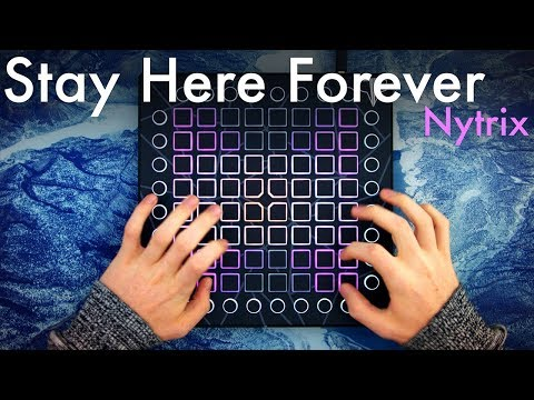 Nytrix - Stay Here Forever // Launchpad Performance (4K)