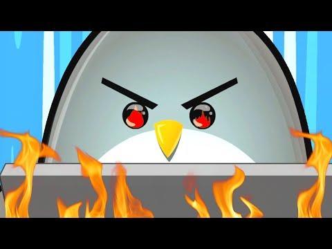 Non Fate Mai Arrabbiare Questo Pinguino