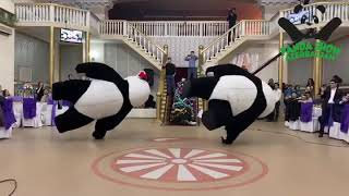 Panda Show Azerbaijan. Möhtəşə yeni il şənliyi