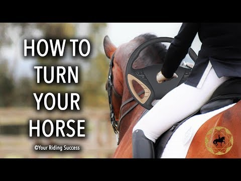 How Do You Steer And Turn Your Horse? - Dressage Mastery TV Ep237