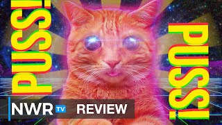 Should You Get Into PUSS! - Switch Review (Video Game Video Review)