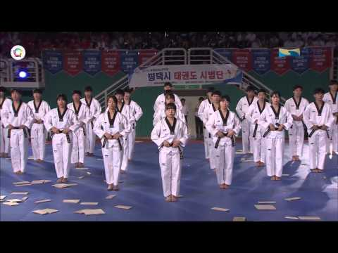 2015 07 30 _ The World Taekwondo Hanmadang 2015 _ Kukkiwon Demonstration Team_Opening Ceremony