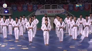 2015 07 30 _ The World Taekwondo Hanmadang 2015 _ Kukkiwon Demonstration Team_Opening Ceremony