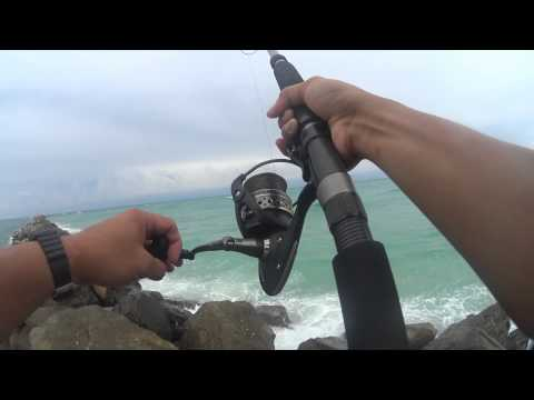 Destin Jetty Fishing