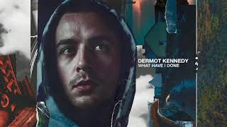 Dermot Kennedy - What Have I Done (Audio) Video