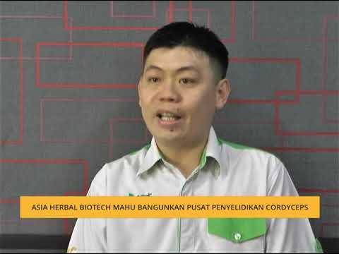Asia Herbal Biotech Mahu Bangunkan Pusat Penyelidikan Cordyceps Youtube