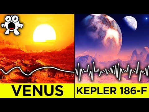 What Life On Other Planets Would Look and Sound Like