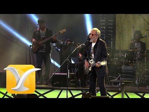 Yusuf Cat Steven,  If You Want To Sing Out, Festival de Viña 2015 HD 1080p
