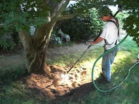Air Spade Root Collar Excavation Youtube