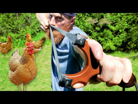 Slingshot Hunting Feral Bush Chickens! | Chicken Noodle Soup, Cowboy Coffee In Catch, Clean, Cook
